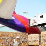 Авиакомпания Asiana получает прибыль три квартала подряд